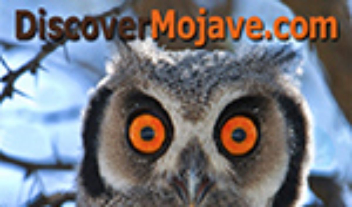 Discover Mojave